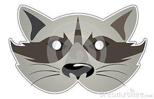 raton-laveur-de-masque-26298314